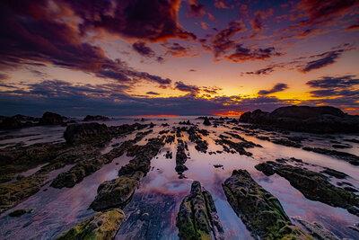 根本海岸 白浜の屏風岩 | 絶景事典