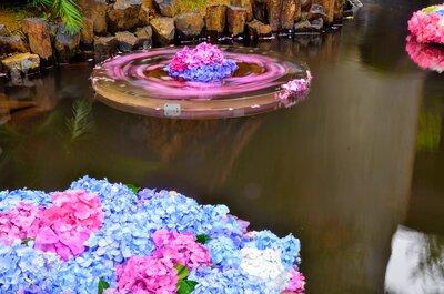 雨引観音 紫陽花の池 | 絶景事典