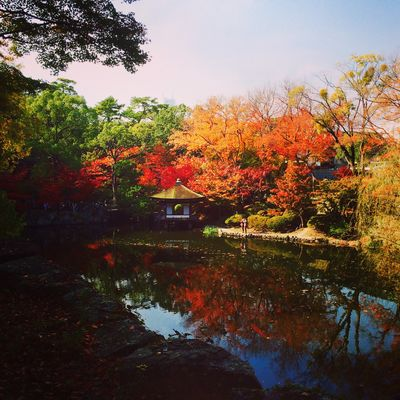 和歌山城 紅葉溪庭園 | 絶景事典