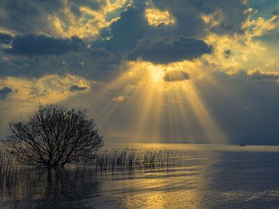 神々しい光が差し込む幻想的な絶景に包まれたいのメイン画像