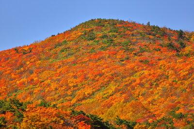 紅葉最盛期の安達太良山 | 絶景事典