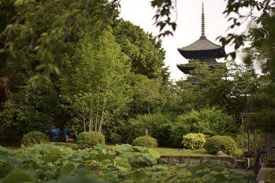 京都 東寺 | 絶景事典