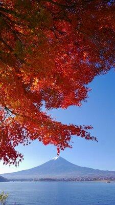 秋の河口湖畔 | 絶景事典