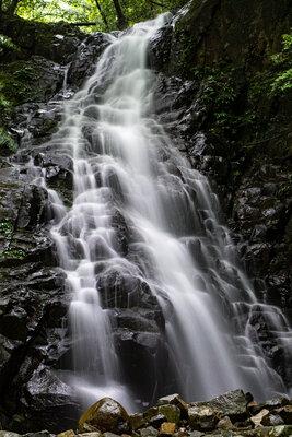 若葉の滝 | 絶景事典