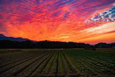 田園の夕焼け | 絶景事典