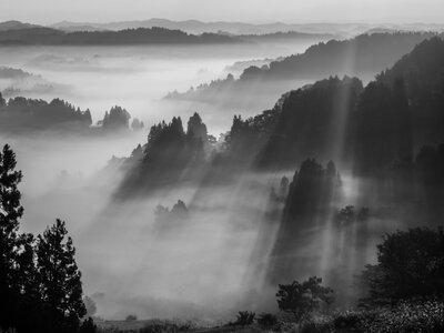 雲海の棚田に差し込む斜光 | 絶景事典