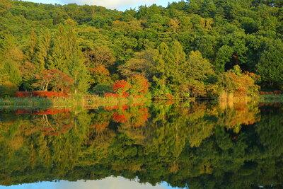 色づき始めの蓼科湖 | 絶景事典