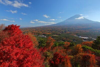 紅葉台から富士山のパノラマ   絶景事典
