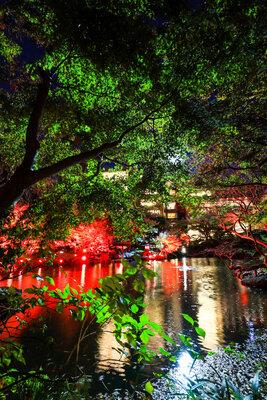 輝く庭園 | 絶景事典