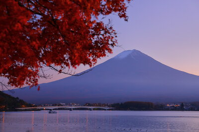 紅葉越しの富士山と河口湖 | 絶景事典