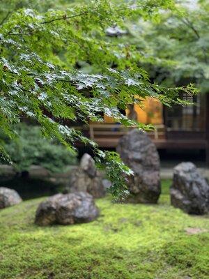 雨の日の建仁寺 | 絶景事典