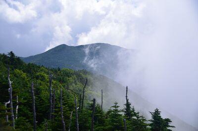 夏の雲 | 絶景事典