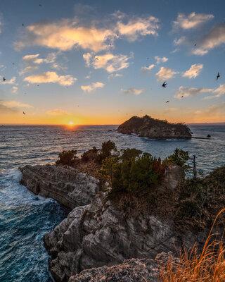 イワツバメと奇岩 | 絶景事典