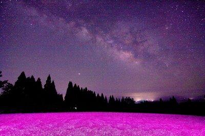 芝桜と天の川   絶景事典