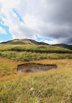 桃野湿原 | 絶景事典