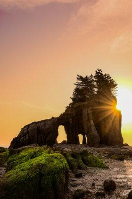 自然の造形美 | 絶景事典