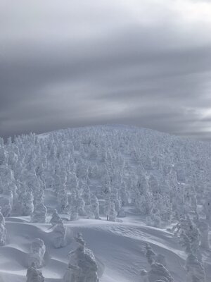 氷の世界〜 | 絶景事典