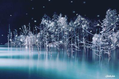 青い池 | 絶景事典