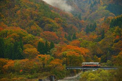 紅葉の大糸線 | 絶景事典