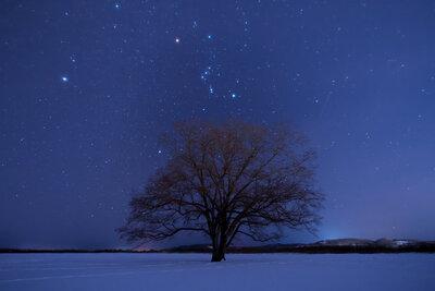 冬の夜空 | 絶景事典