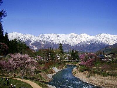 新緑・桜と北アルプス白馬連峰 | 絶景事典