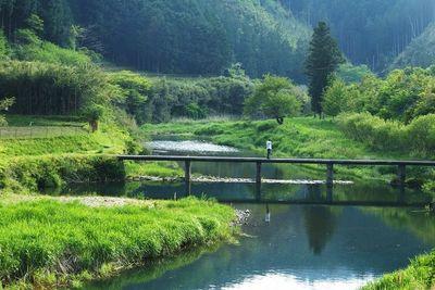 高樋沈下橋 | 絶景事典