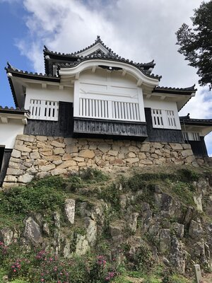秋明菊と備中松山城   絶景事典