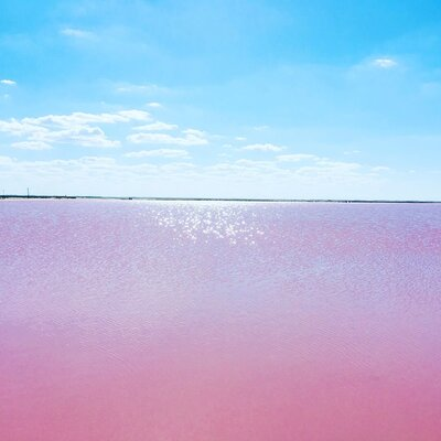 ピンクレイク | 絶景事典
