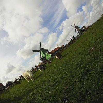 オランダの風車 | 絶景事典