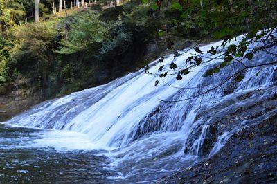 粟又の滝   絶景事典