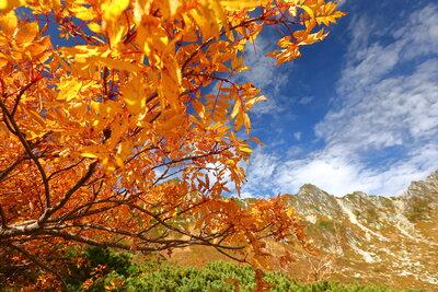 千畳敷カールの紅葉 | 絶景事典