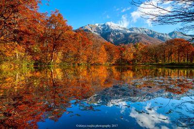 雪山と紅葉のリフレクション | 絶景事典