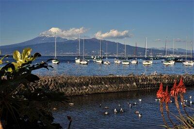 伊豆西海岸線からみた富士山 | 絶景事典