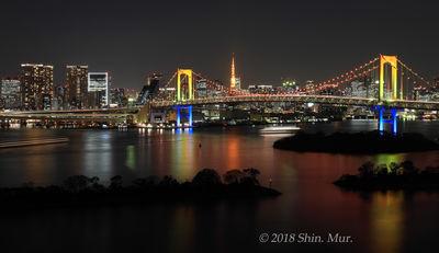 クリスマス夜のレインボーブリッジと東京タワー | 絶景事典