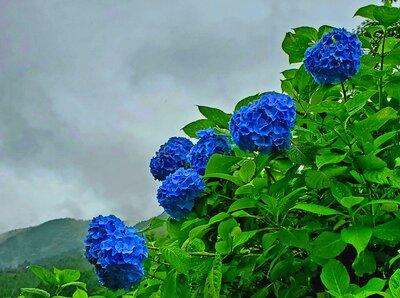 雨空が似合う風景 | 絶景事典