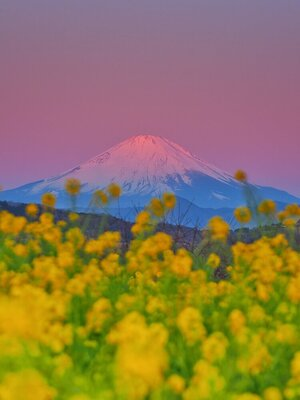 グラデーションに彩られる、夜明けの絶景特集!のメイン画像