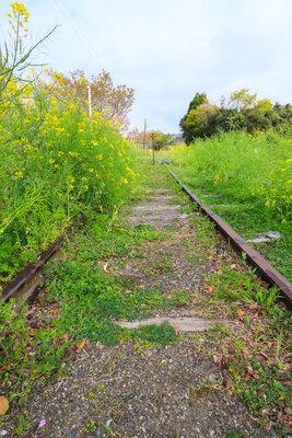 終着駅を降りたら、そこは花畑だった | 絶景事典