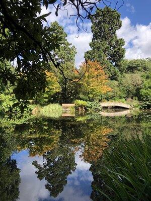 池に反射する景色 | 絶景事典